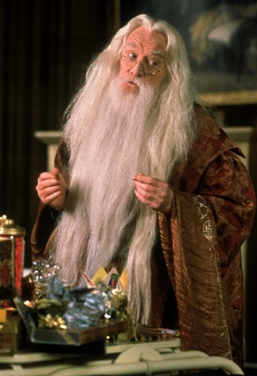Harry Potter - Dumbledore 3