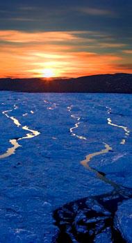 2007-11-01-ice.jpg