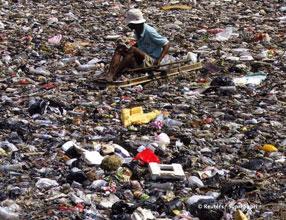 2007-11-06-111.indonesianscavengernew.jpg
