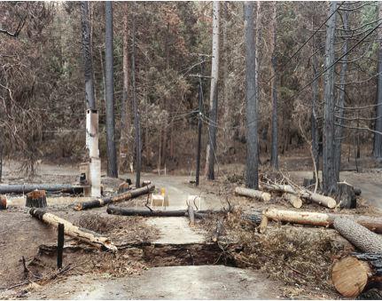 2008-03-21-2.jpg