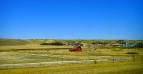 2008-06-18-farm.jpg