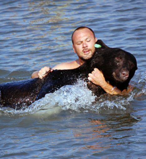 2008-07-11-drowningbearpic01.jpg