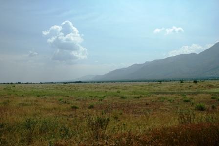 2008-07-14-No wildlife in Virunga Grassland-DSC_0707_virunga_grasslands.JPG