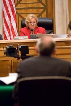 2008-07-31-hearing.jpg