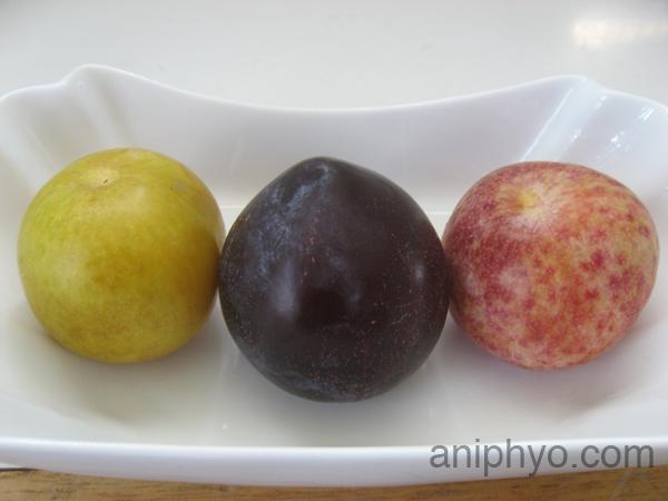 2008-08-26-plums.jpg