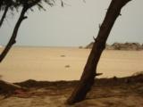 2008-08-27-RameswaramParadibeach.jpg