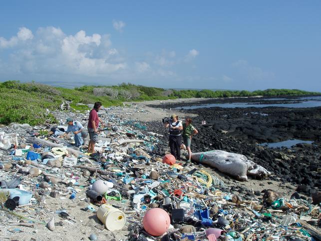 2008-08-29-PlasticBottles3.jpg