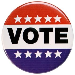 2008-09-02-vote5b65dpw2.jpg