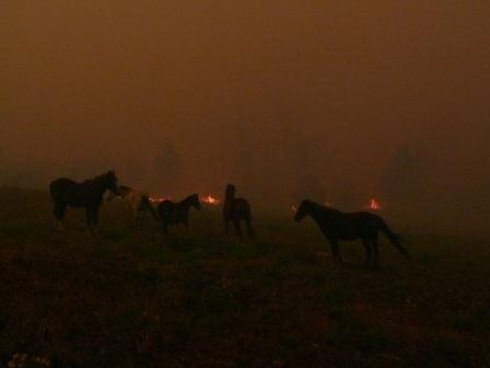 2008-09-06-fireskaapsehoop2.jpg