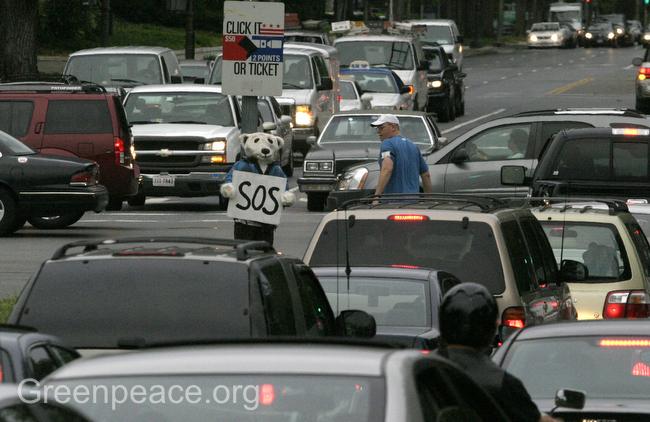 2008-09-17-greenpeacestreetbear.JPG