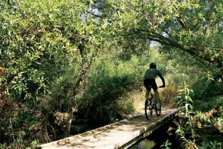 2008-09-19-biking_in_canyon_preserve.jpg