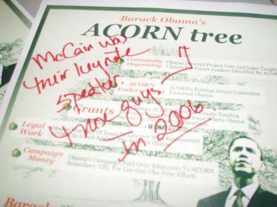 2008-10-16-acornbs.jpg