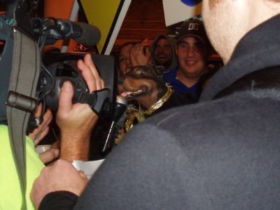 2008-10-16-triumph.jpg