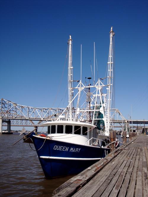2008-10-28-shrimp_6.jpg