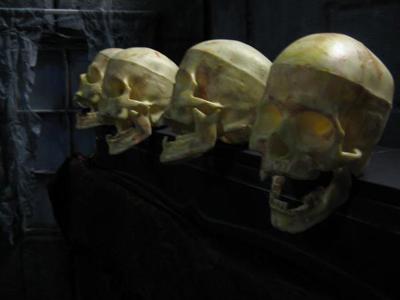 2008-10-31-skulls.jpg