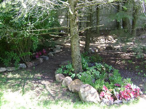 2008-12-05-paths.jpg