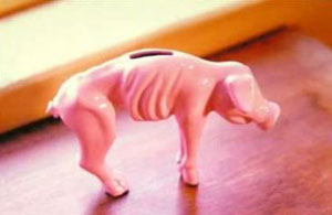starving piggy bank photo