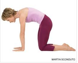 yoga poses  huffpost