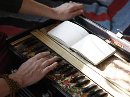 2009-02-14-PlayingtheHarmonium.jpg