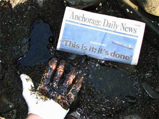 Exxon Valdez spill continues to damage PWS ecosystem=