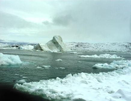 2009-04-21-AntarcticaSouthAmericaSabrinasBDGreenland374.JPG