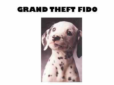 2009-05-20-grandtheftfido.jpg