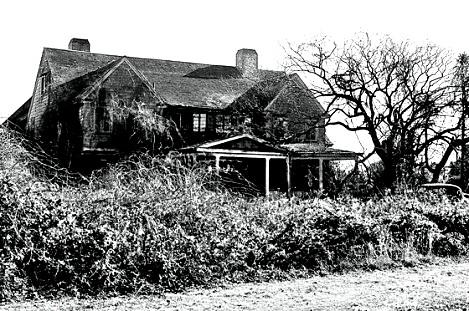 2009-06-16-gettygreygardenshouseimage469x311.jpg