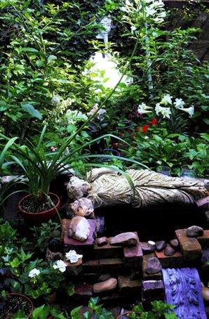2009-06-17-Garden2Pix.jpged.jpg