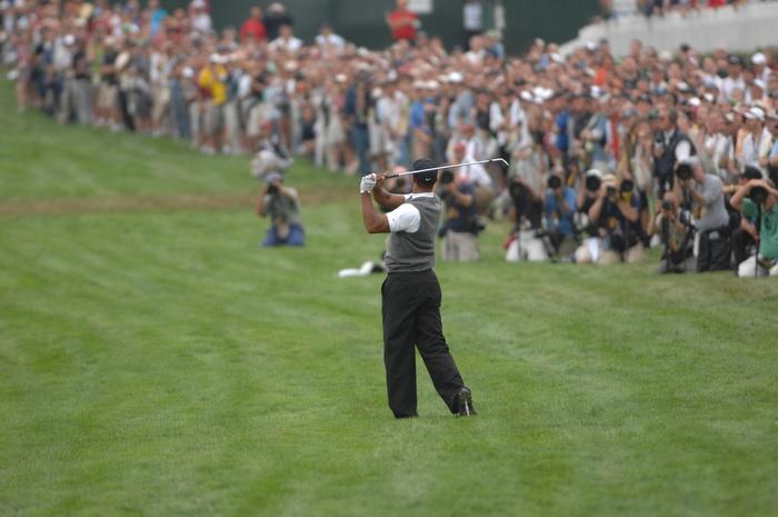 2009-06-24-Tiger.jpg