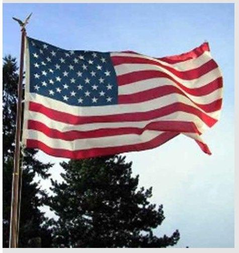 2009-08-20-badamericanflag2.jpg