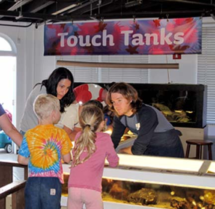 2009-09-06-Touchtanks.jpg