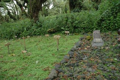 2009-09-28-DSC_0128_grave.JPG