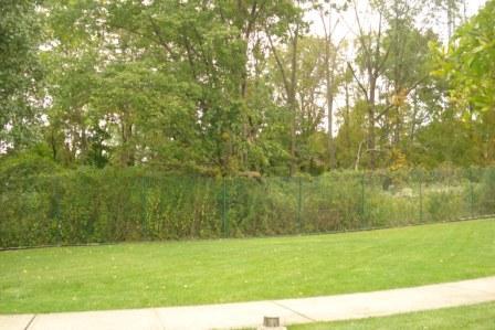 2009-10-14-theoutdoorsardencourt.jpg