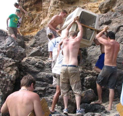 2009-10-22-rockrescue2crop.jpg