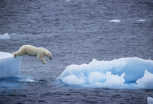 2009-11-09-EARTH_33_polarbear.jpg