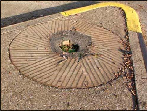 2009-11-16-millstone1.jpg