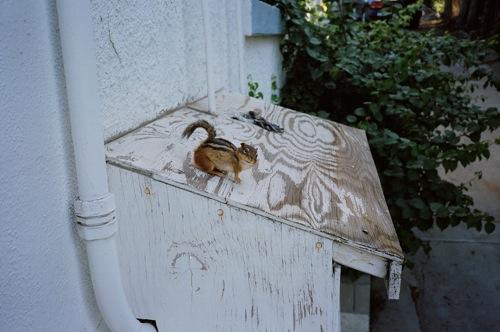 2009-12-04-flush20.jpg
