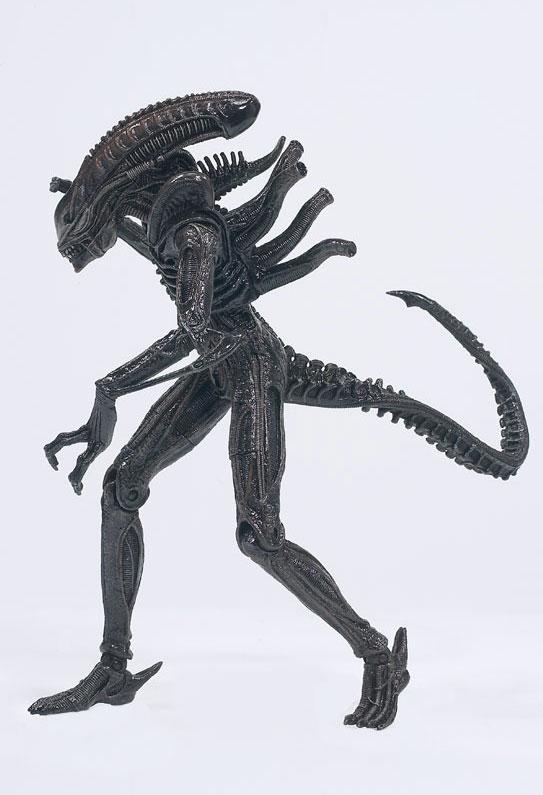 2010-01-09-warrior_alien_ref_l.jpg