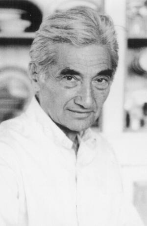 the late Howard Zinn twice
