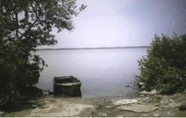 2010-02-19-boat.jpg