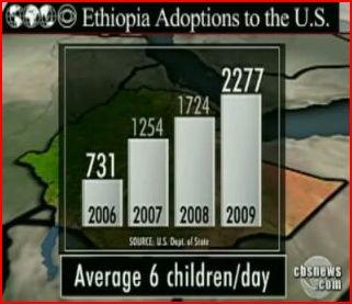 2010-02-22-AdoptionStat2.JPG