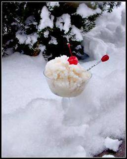 2010-02-22-SnowIceCreamwithbushWinCE.JPG