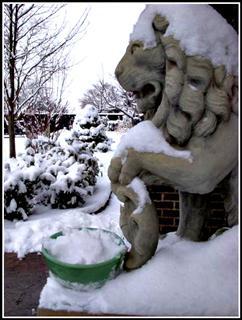 2010-02-22-SnowIceCreamwithlionWinCE.JPG