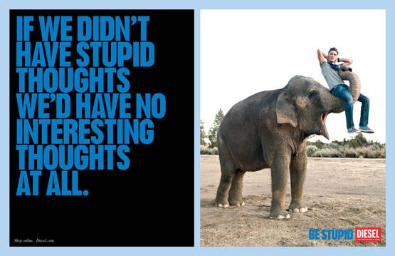 2010-03-01-elephante.jpg