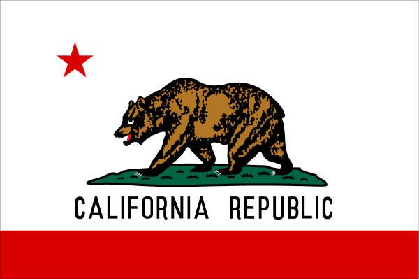 2010-03-13-californiastateflag.jpg