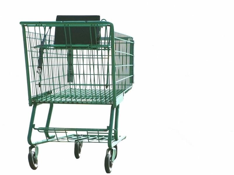 2010-03-15-grocery_cart.jpg