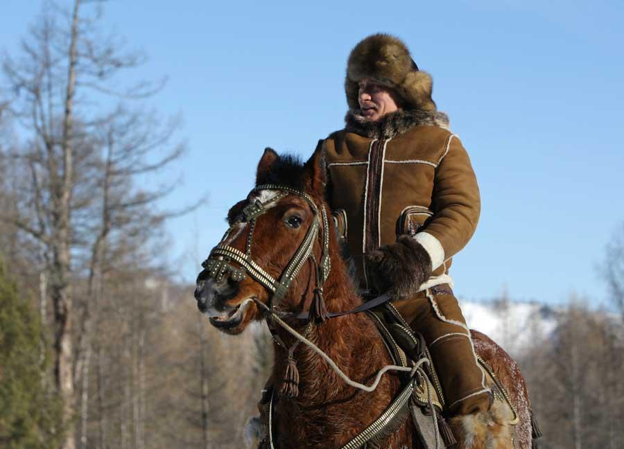 Putin Pferd