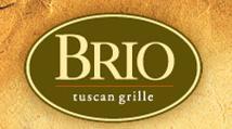 2010-03-17-Brio.JPG