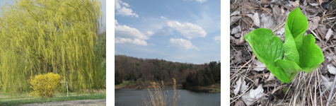 2010-04-12-row6.jpg
