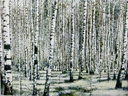 2010-04-16-Birches_sm.jpg